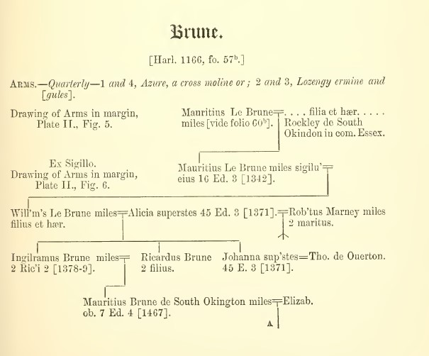 Brune pedigree 1623_1