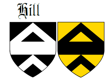 Fess between two chevrons Hill